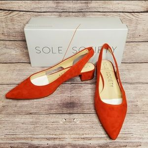 Sole Society red pointed toe suede heels